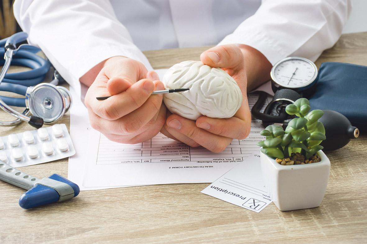 Mediziner hält ein Modell des Gehirns auf seinem Schreibtisch