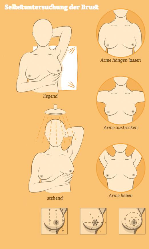 Grafik: Selbstuntersuchung der Brust. Quelle: GEKID, 2015