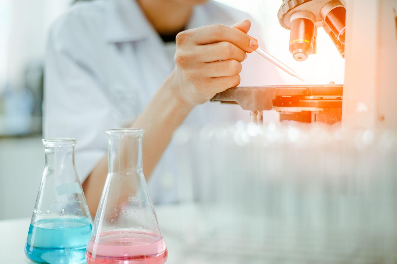 Krebsforschung: mikroskopische Untersuchung